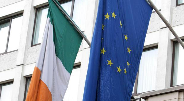 Irish and European businesses were questioned for the survey.