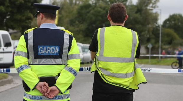 Two men were arrested over cannabis and cocaine seized by gardai in Co Meath as part of an international operation