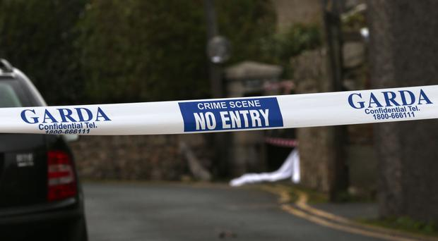 Gardai have been searching Mitchell's Wood in Castlemartyr (Laura Hutton/PA)