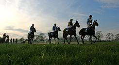 The equine stars of steeplechasing are on target for the Down Royal Festival at the start of November. (stock photo)