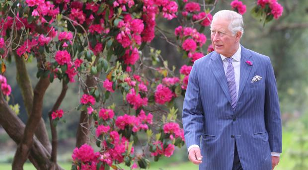 The Prince of Wales during a visit to National Botanic Gardens, Kilmacurragh (Chris Jackson/PA)