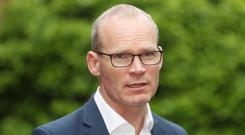 Simon Coveney said everyone was waiting to see who would replace Theresa May (Niall Carson/PA)