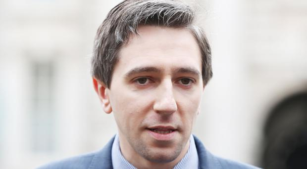 Simon Harris said the tribunal will hear and determine claims arising from the clinical audit (Niall Carson/PA)