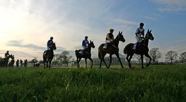 Outbox can see off all challengers in Goodwood's Qatar Summer Handicap today (stock photo)