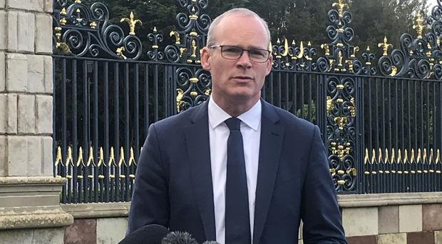 Simon Coveney is accused of being in denial about the scale of the issues facing the health service (Rebecca Black/PA)