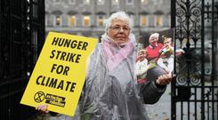 Grandmother Patricia Devlin, 78, a member of Extinction Rebellion Ireland, outside the gates of Leinster House, Dublin (Brian Lawless/PA)
