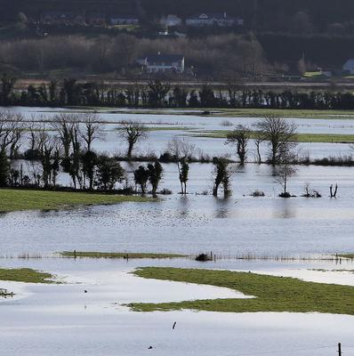 Flooded fields in Co Wexford