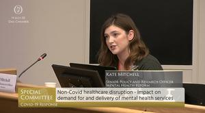 Kate Mitchell, from Mental Health Reform, said the sector had been 'incredibly responsive' (Screengrab/Oireachtas TV/PA)
