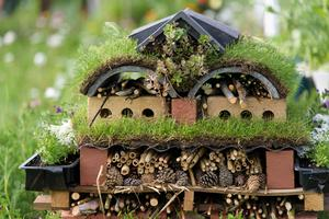 Bug hotels can help connect with nature (Georgi Mabee/RHS)