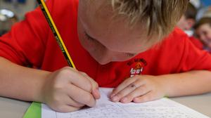Thirty-one per cent of boys said that they rarely write for fun outside of lessons