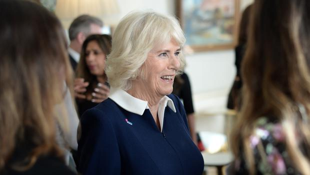 The Duchess of Cornwall during a reception for the 15th anniversary of the domestic abuse charity SafeLives (Eamonn McCormack/PA)