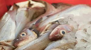 The technique could provide an alternative to fish oil (Steve Parsons/PA)