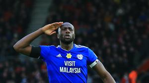 Cardiff City's Sol Bamba celebrates scoring his side's first goal of the game during the Premier League match at St Mary's Stadium, Southampton (PA)
