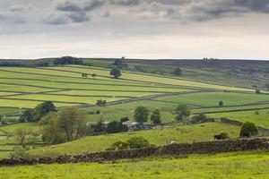 The plans include rewarding local farmers for conservation work (National Trust/Chris Lacey/PA)