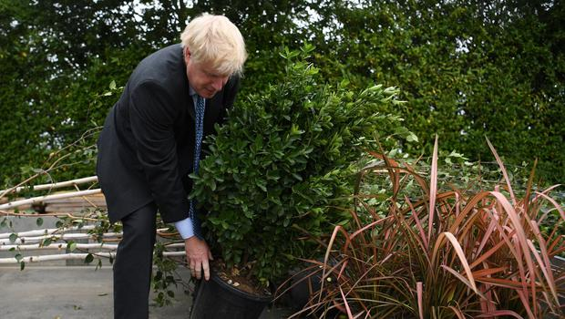 The Conservative Party has pledged a £640m Nature for Climate fund to increase tree planting in England (Neil Hall/PA)