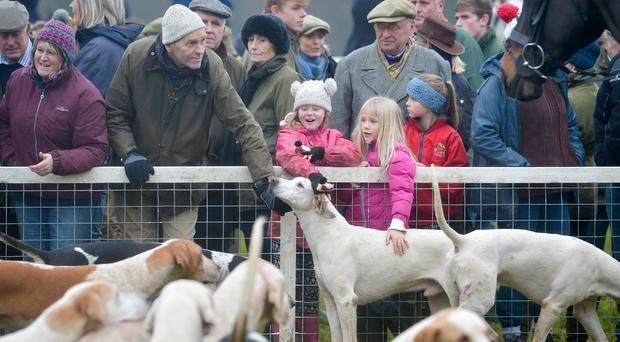 Children stroke the hounds at Worcester Lodge during the Beaufort Boxing Day Hunt in Badminton, Gloucestershire (Ben Birchall/PA)