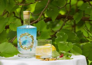 The gin next to a mulberry tree in the palace garden (Royal Collection Trust/Her Majesty Queen Elizabeth II 2020/PA)