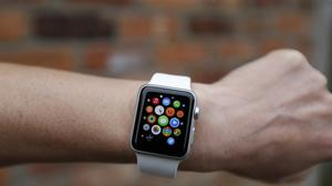 The report gives little detail on sales of the Apple Watch