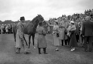 The Queen smiles and gives her four year old colt Aureole a congratulatory pat on the nose after a win in 1954 (PA)