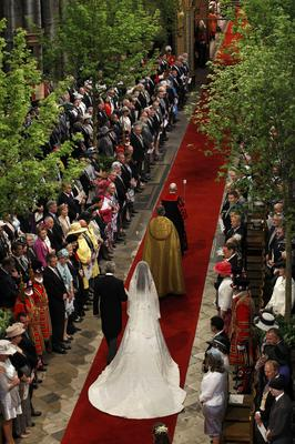 The trees alongside the aisle at William and Kate's Westminster Abbey wedding (Suzanne Plunkett/PA)