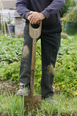 Gardening is an eco-friendly choice (Chris Ison/PA)