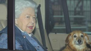 The Queen's pet dog Vulcan has died (Aaron Chown/PA)