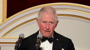 The Prince of Wales speaking at one of his last public engagements before the news emerged (Eamonn McCormack/PA)