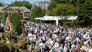 Crowds normally flock to the Chelsea Flower Show but it has been forced online by the pandemic (Aaron Chown/PA)