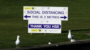 A HSE sign encouraging Social Distancing is seen behind two seagulls in Howth, Dublin, as restrictions remain in place in Ireland to help curb the spread of the coronavirus.