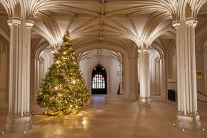 A Christmas tree in Windsor Castle's Inner Hall (Royal Collection/Her Majesty Queen Elizabeth II 2020/PA)