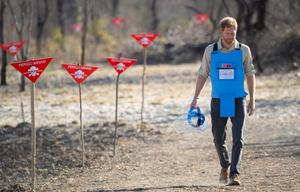 Harry follows in Diana's footsteps by walking through a minefield in Dirico, Angola (Dominic Lipinski/PA)