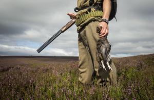 The grouse season begins on the 12th. (Danny Lawson/PA)