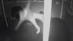 CCTV image of a burglar falling from a roof