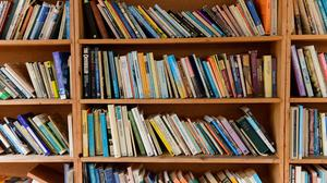 General view of books on a bookshelf (Ryan Phillips/PA)