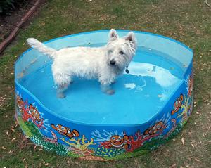 Water companies are urging people to use water more carefully and not to fill paddling pools (Martin Keene/PA)