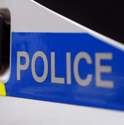 Police said the light aircraft came down at Colyton near Lyme Regis