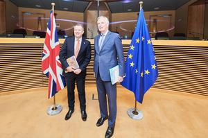 Both the UK and EU chief Brexit negotiators tested positive for Covid-19 but are determined to press ahead with post-Brexit talks PA)