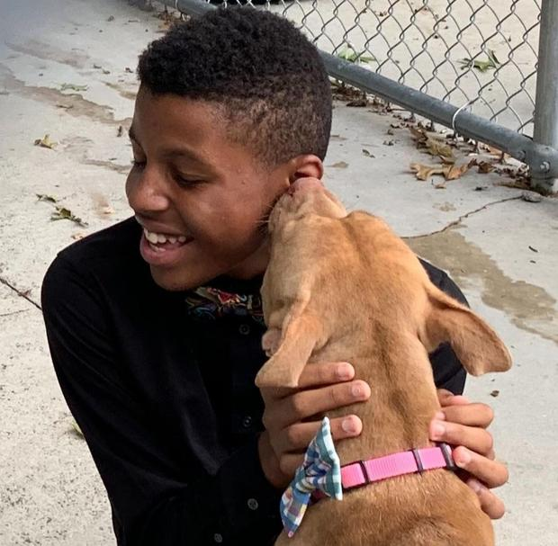 Darius has helped a number of animals get adopted with his bow ties (Joy Brown)