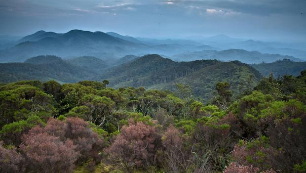 Landscape view of the Congo region. Two Britons have been kidnapped in the Democratic Republic of Congo (Liana Joseph/PA)