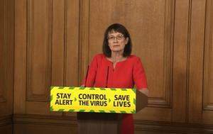 Deputy chief medical officer Jenny Harries (PA)