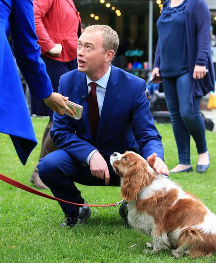 Liberal Democrat Tim Farron has called for Priti Patel to demonstrate she is taking dog theft seriously (Peter Byrne/PA)