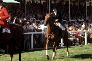 Princess Anne does a lap of honour after becoming the Individual European three-day eventing champion in 1971 (PA)