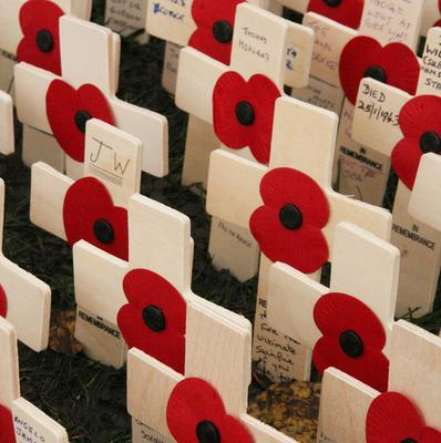 More than 30 events have been organised by volunteers for the Royal British Legion Scotland to mark Remembrance Sunday