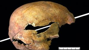 A skull with a piercing arrow (Oliver Creighton/University of Exeter/PA)