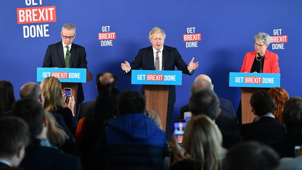 The PM later held a press conference alongside Chancellor of the Duchy of Lancaster Michael Gove and former Labour MP Gisela Stuart (Dominic Lipinski/PA)
