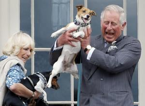 The Duke and Duchess of Rothesay, as they are known in Scotland, holding Camilla's dogs Beth, left and Bluebell in 2015 (Danny Lawson/PA)