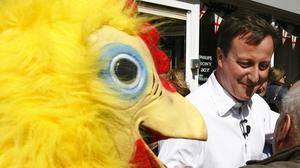 Conservative Party leader David Cameron walks around Tamworth followed by a man dressed as a chicken, working for the Daily Mirror newspaper (PA)