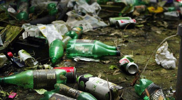 Around one in seven of Northern Ireland's streets and parks failed to meet the accepted standard for litter last year, it has been claimed