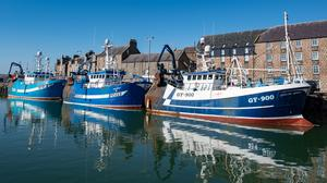 Demand for Scottish delicacies such as langoustine, prawns and crab has fallen sharply as the export and hospitality markets contract (Michal Wachucik/PA)