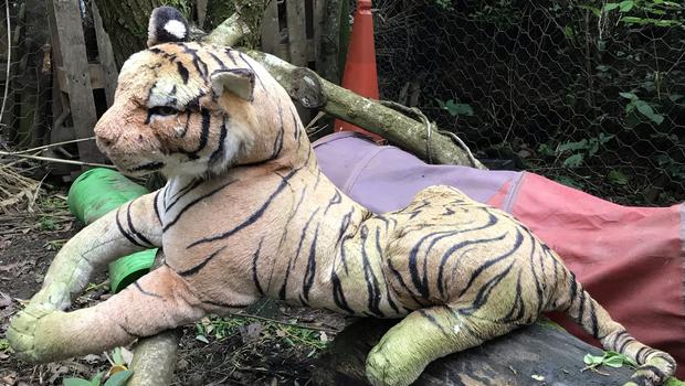 The tiger turned out to be a stuffed toy (RSPCA/PA)